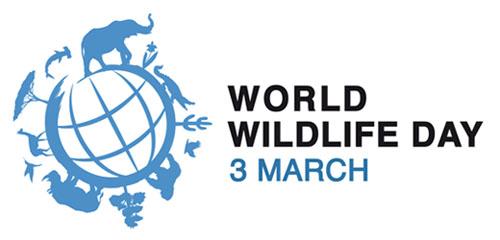 World Wildlife Day - Logo