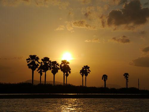 Sonnenuntergang am Lake Manze im Selous Game Reserve