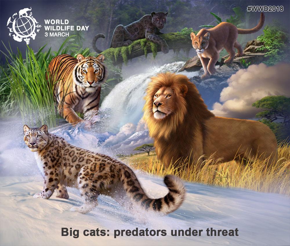 World Wildlife Day 2018: Big cats - predators under threat